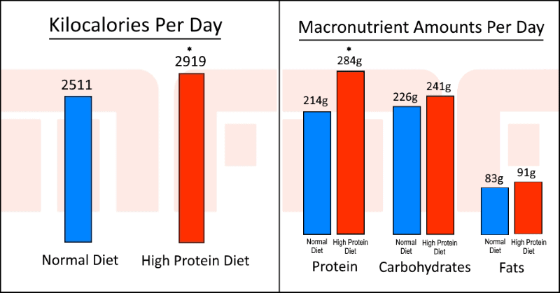 High Protein Diets 3 - Myolean Fitness