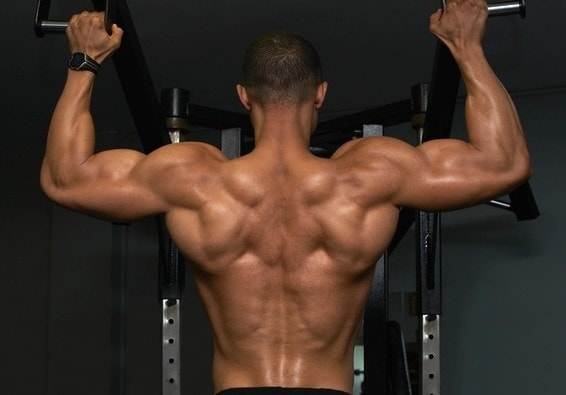 The Best Upper Back Exercises for Width and Thickness - Myolean Fitness 1