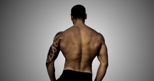 Upper Back Exercises - Myolean Fitness 500