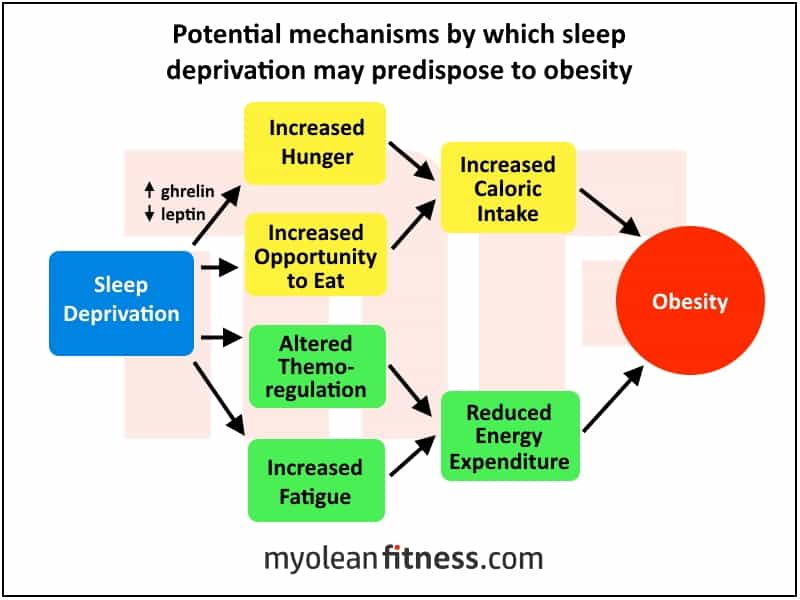 Weight Loss Tips - Myolean Fitness - Sleep Deprivation