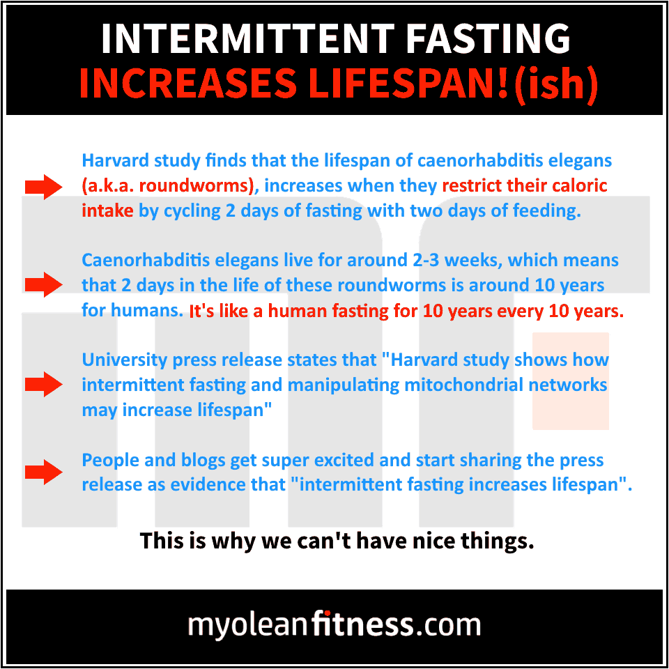 Intermittent Fasting Increases Lifespan - Myolean Fitness