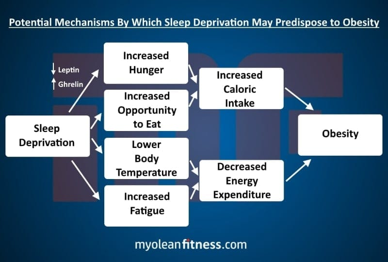 Sleep and Weight - Infographic - Myolean Fitness